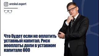 Что будет если не оплатить уставный капитал. Риск неоплаты доли в уставном капитале ООО.
