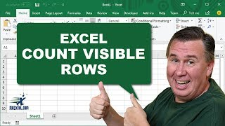 Count Visible Rows - 1034 - Learn Excel from MrExcel