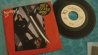Divinyls - Hey Little Boy (12  Mix)