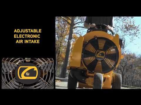 Cub Cadet CB 2900 Gas Blower in Saint Marys, Pennsylvania - Video 1