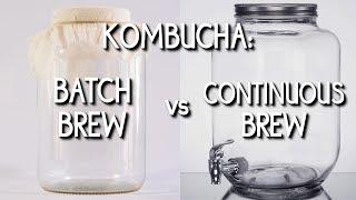 Kombucha: Batch Brew Vs. Continuous Brew