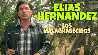 Elias Hernandez - Los Malagradecidos (Video Musical)