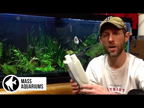 Video How To: How to get rid of ich in the planted aquarium.