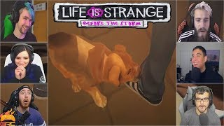 Gamers Reactions to the Puppy Pompidou | Life is Strange: Before the Storm Episode 2