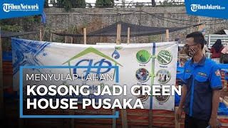 Menyulap Lahan Kosong Menjadi 'Green House Pusaka', Jadi Tempat Produksi Sayur hingga Ternak Puyuh