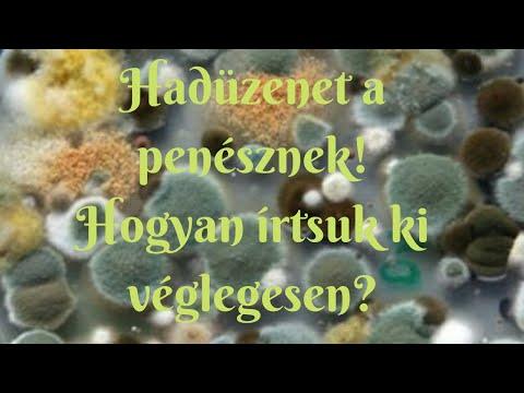 A zoonózisos paraziták meghatározása
