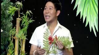 Kim Loan & Linh Vũ  - Liên Khúc Can Nha Ngoai O & Ngoai O Buon - DVD Tình Nghệ Sỹ 09