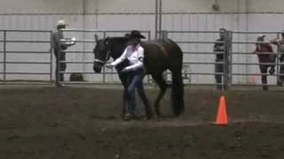 4-H Western Horse Showmanship