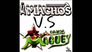 Banda Machos Vs Banda Maguey Quebraditas Mix
