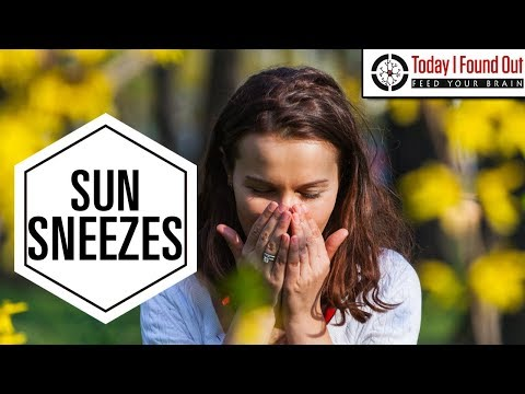 Why Does the Sun Make You Sneeze?
