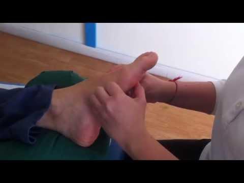 Cultura fisica a osteochondrosis di reparto di petto di video