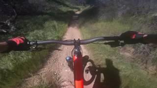 Kona Trail