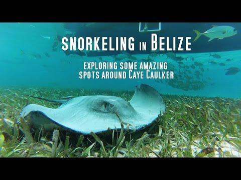 Schnorcheln Belize, Caye Caulker,Belize