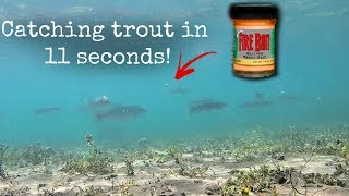 How To Catch Stocked Trout EASY With Pautzke Fire Bait