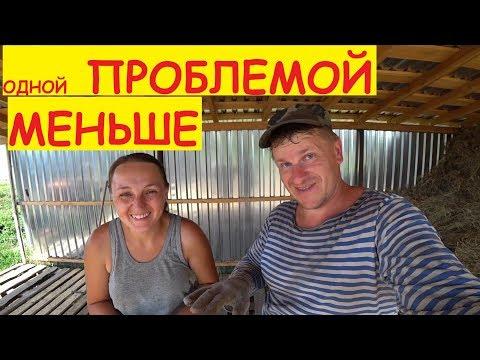 Деревенские будни / Привезли сено / Поездка за поддонами / Семья в деревне