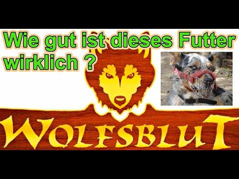 Wie gut ist das Hundefutter Wolfsblut wirklich ? / Hundefutter im Test / Nature Trails