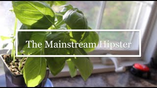 The Mainstream Hipster (Stuff Wannabe Hipsters Say)♡