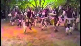 2 Live Crew -Throw the D(hexhexhex remix)