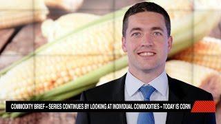 CORN - Resumo da Commodity Milho