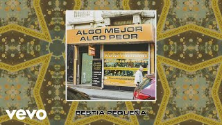 Babasónicos   Bestia Pequeña (Lyric Video)