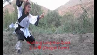 Dragón Wudangshan 武當武術 龍華拳 Long Hua Quan Dragon Form.