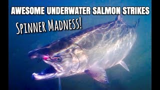 Blue fox super vibrax salmon