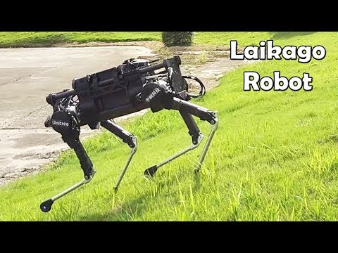 Laikago, Four Legged Dog Robot Created By Unitree Robotics Looks Like Spotmini From Boston Dynamics