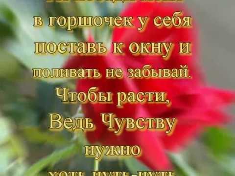 Текст песни руденко счастье