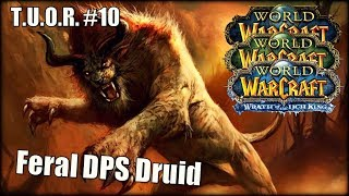 The Underdogs of Raiding #10 - Feral DPS Druid feat. ShedotheDruid