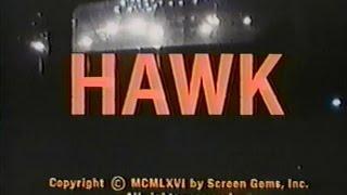 """Hawk"" TV Intro"