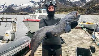 Без Денег в Норвегии. Подводная Охота на Лофотенских Островах