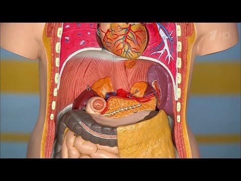 Магнитотерапия при остеохондрозе показания