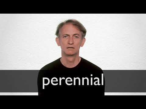 Perennial Definition And Meaning Collins English Dictionary