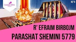 Parashá Shemini