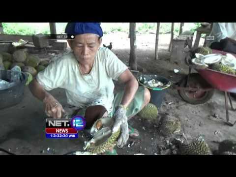 Video Sensasi Unik Menikmati Keripik Biji Durian - NET12