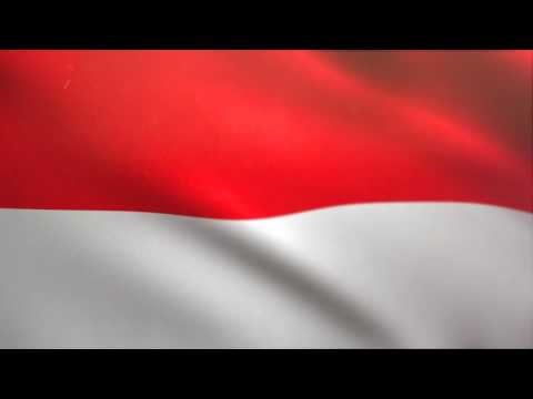 Indonesian Flag Waving Animated Using MIR Plug In After Effects - Free Motion Graphics