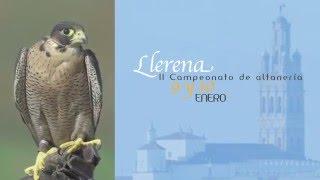 Campeonato de Extremadura de Altanería 2016