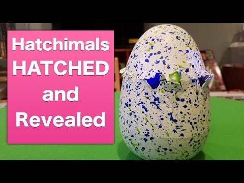 Hot 2016 Christmas Toy Hatchimal Draggles reveal.