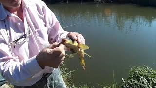 Рыбалка в садовом краснодарский край республика адыгея