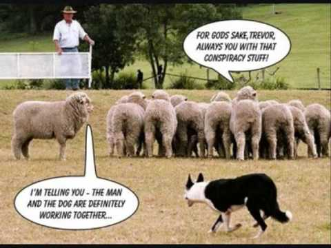 SuperManning - Sheeple (ft. Phil Nastyy) LMAO