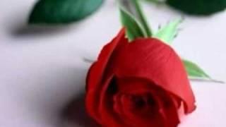 acker bilk-la vie en rose..wmv