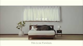 【ネコ家具できました】篇 英語版