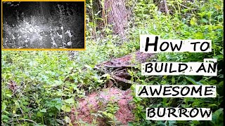 HOW TO BUILD AN AWESOME BURROW / armadillo trail camera/броненосец