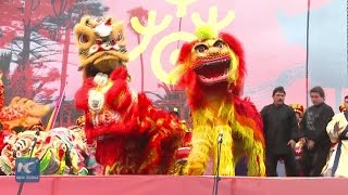 Lion and dragon dance help Chileans feel air of Chinese Spring Festival