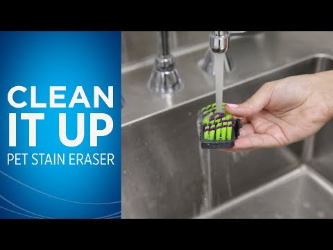 How do I Clean my Pet Stain Eraser™ After I Use it Video