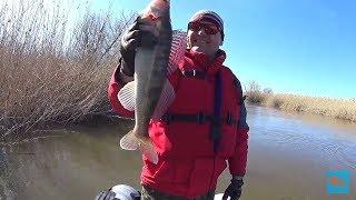 Подходят рыбалка весна астрахань