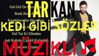 TARKAN-Kedi Gibi Sözleri Lyrics (2017)(Müzikli)