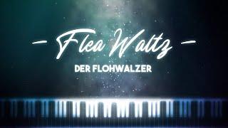 Synthesia [Piano Tutorial] Flea Waltz - Der Flohwalzer