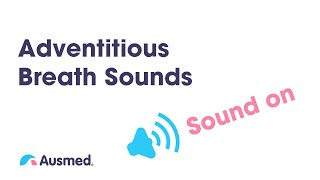 Adventitous Breath Sounds: Stridor, Wheezes/ Rhonchi, Crackles/ Rales, Pleural Rub