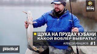 Рыбалки на щуку осенью в краснодарском крае